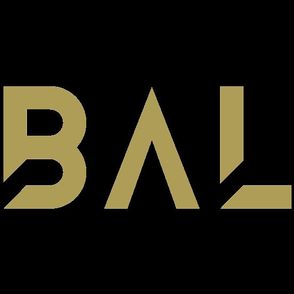 Partner BB HUB (early access)